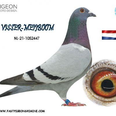 NL 21-1052447