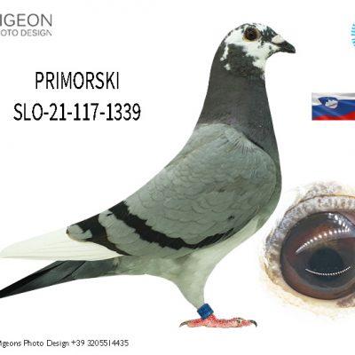 SLO-21-117-1339